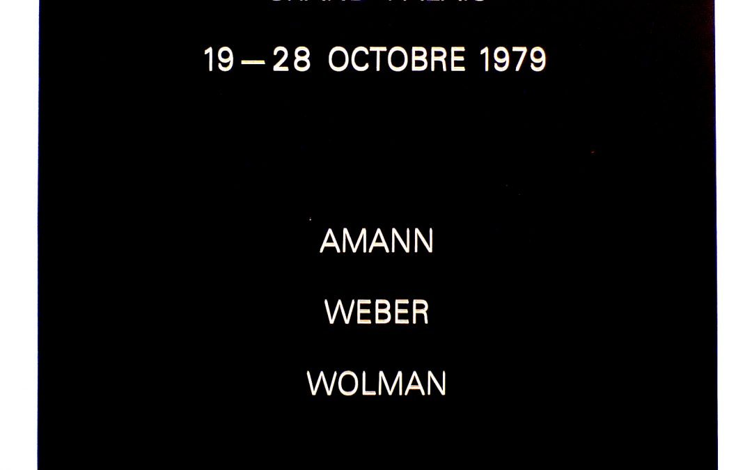 Histoire de la peinture, Amann, Weber, Wolman